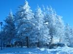 Snowshoe, WV
